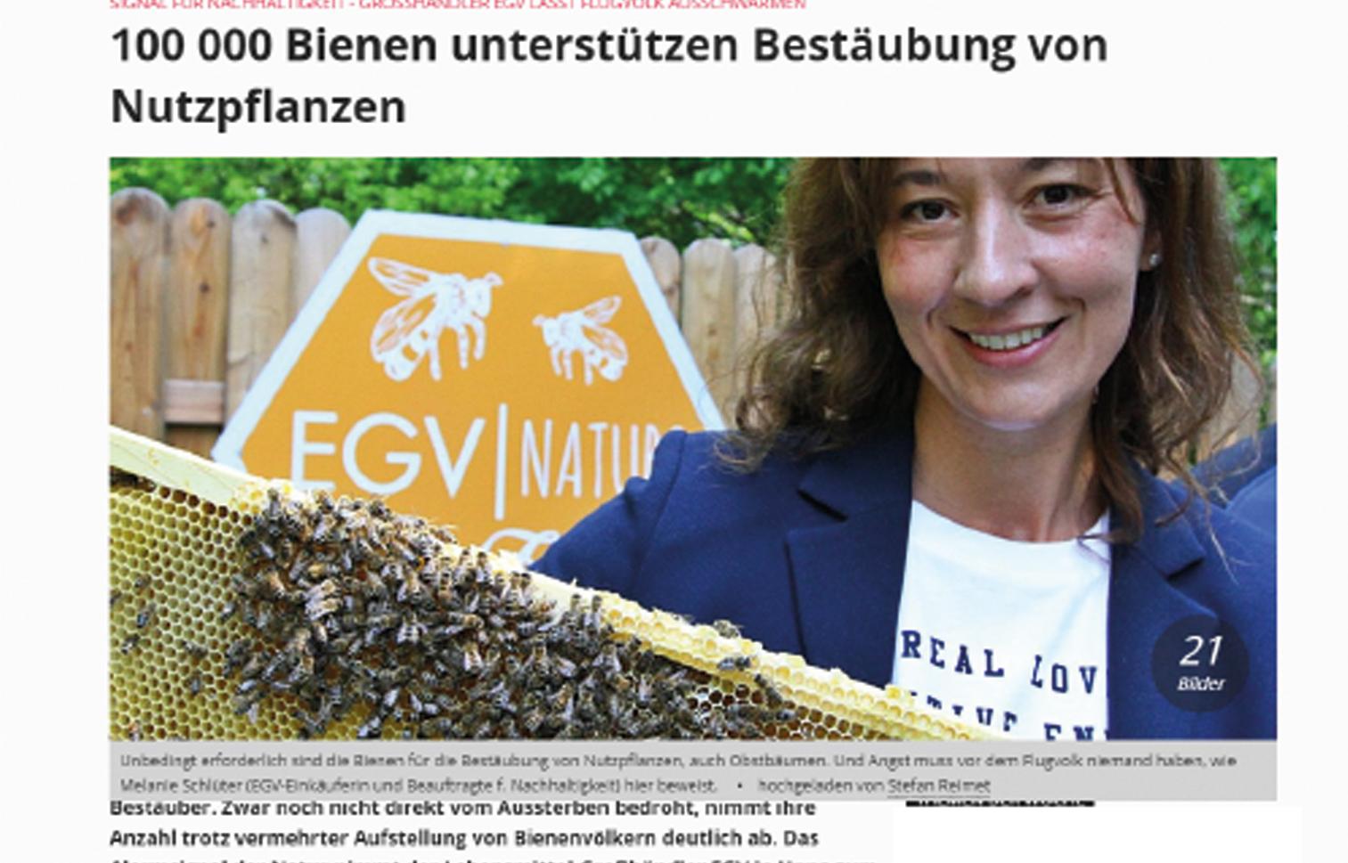 Presseartikel: 100.000 Bienen unterstützen Bestäubung von Nutzpflanzen